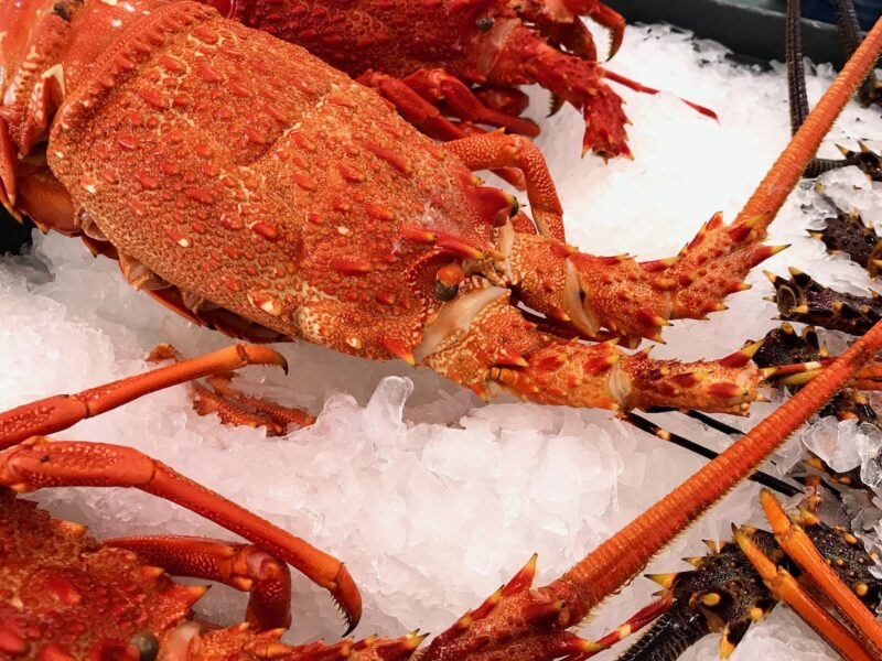 Seafood, dairy products see goods export up $233m in Dec quarter