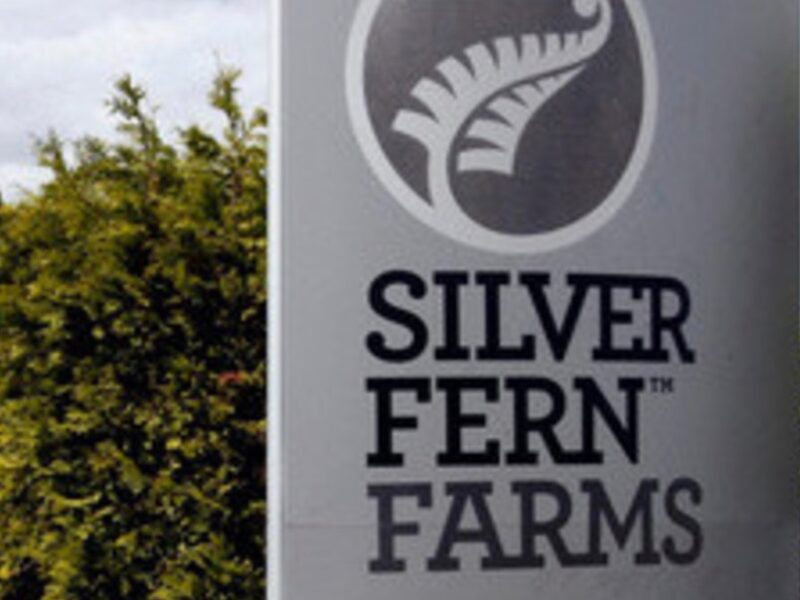 Silver Fern Farms preps Plate to Pasture 2021
