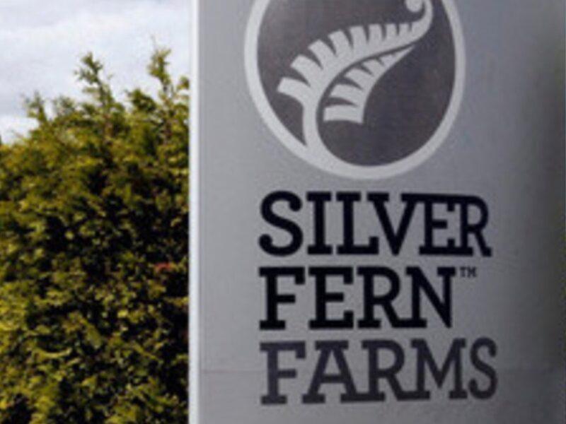 Silver Fern Farms profit steady despite pandemic