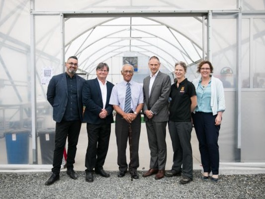 Pest potential: New facility to research green seaweed