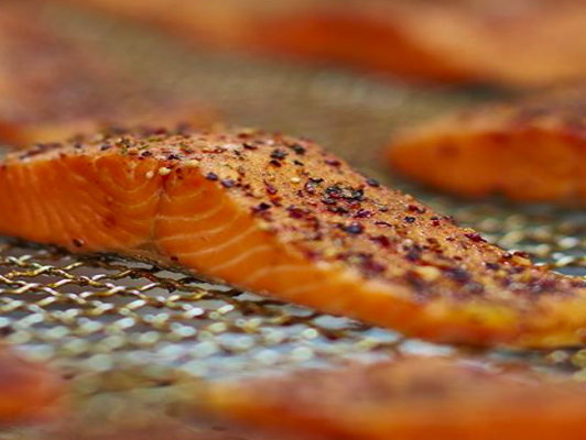 Southland scoped for salmon farming