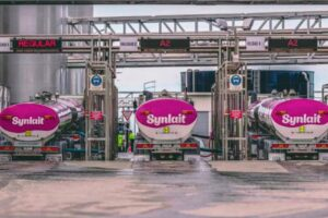 Synlait bets on diversification to build value