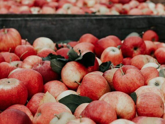 Fruit production fungicide makes EPA hazardous list