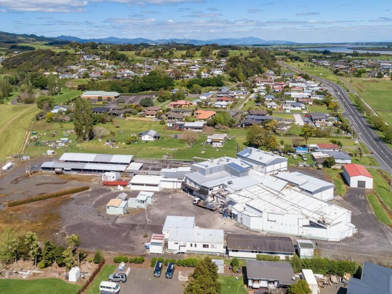 Mothballed meat works up for sale