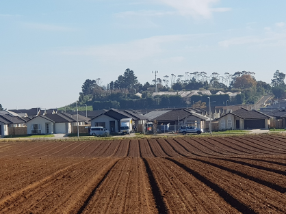 HortNZ:  Food security just as important as housing