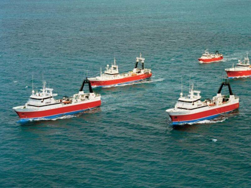 We shouldn't be fined for skipper's error – Amaltal