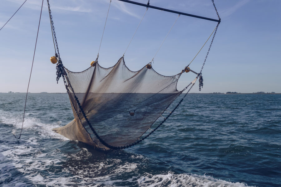 "Greens push to stop ""dirty"" bottom trawling"