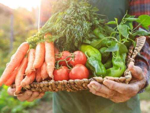 United Fresh holds UN future food brainstorm