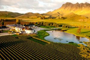 Hawke's Bay Wine Auction celebrates 30 years