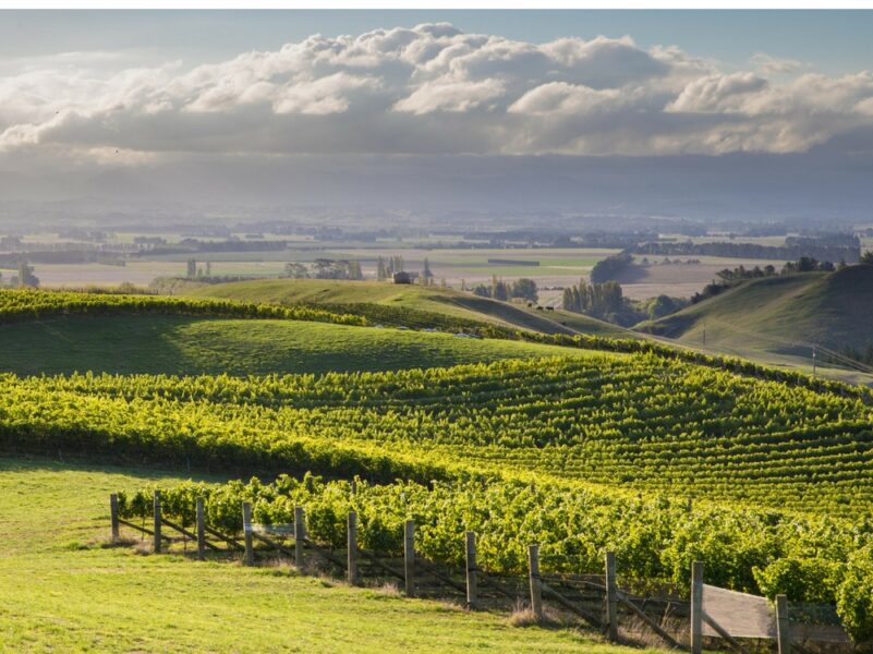 Lime Rock vineyard up for sale
