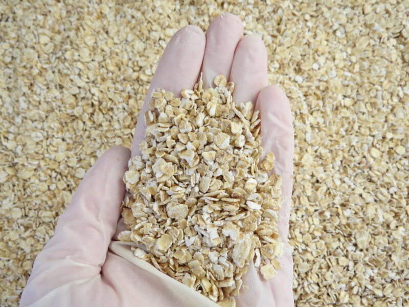 Investors line up for NZ's first carbon-neutral oat milk factory