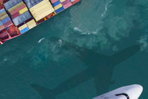 Supply chain congestion continues – NZTE