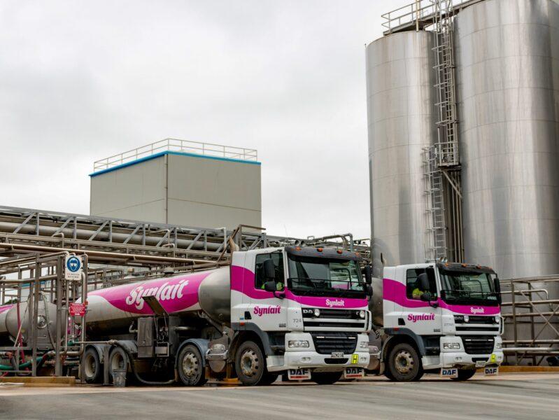 Synlait hikes milk price forecast