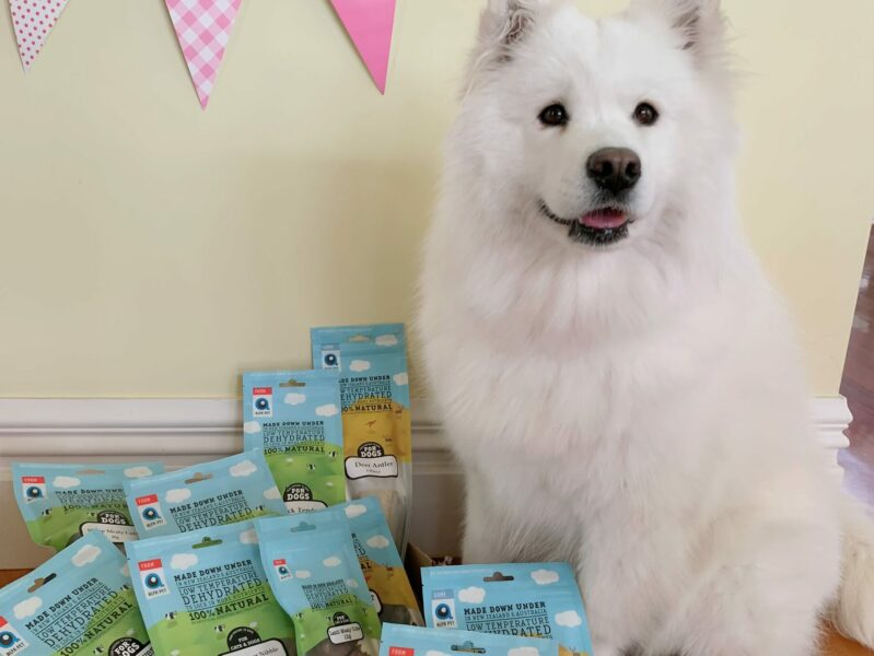 Chinese demand drives expansion for Alfa Pet
